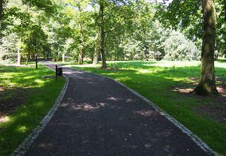 Ochrona różnorodności biologicznej w Kędzierzynie-Koźlu Etap I- zabytkowy park w Sławięcicach