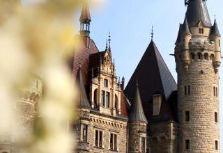 Zamek w Mosznej z certyfikatem