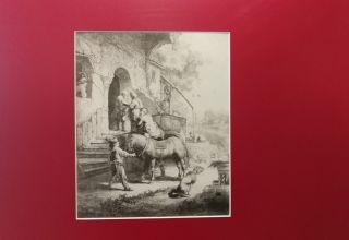 Rembrandt w Opolu